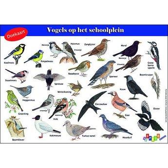 Tringa paintings natuurkaarten Doekaart- Vogels op het schoolplein