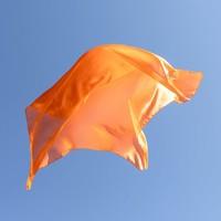 Sarah's silks speelzijde oranje
