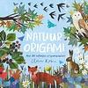 Lemniscaat Lemniscaat Natuur Origami