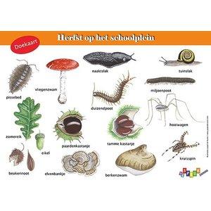 Tringa paintings natuurkaarten Doekaart Herfst