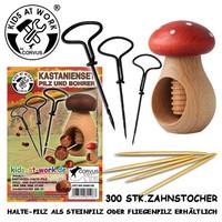 kastanjeknutselset paddenstoel rood/wit