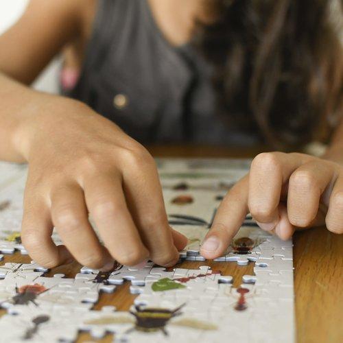 Poppik stickerkunst Poppik Puzzel Insecten 500 stukjes