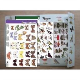 Tringa paintings natuurkaarten 39 herkenningskaarten in opbergmap
