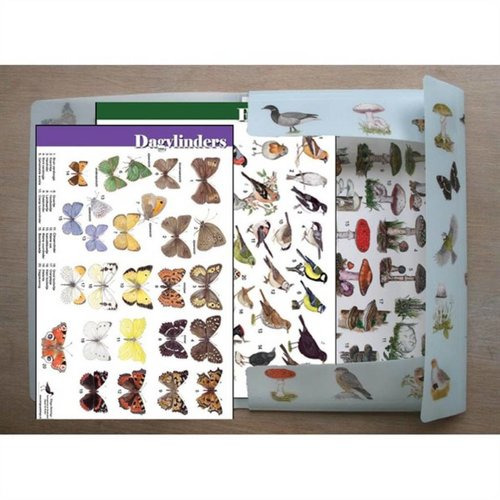 Tringa paintings natuurkaarten Tringa 45 herkenningskaarten in opbergmap