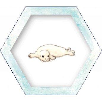 Sunny games - Zonnespel - coöperatieve spellen Antarctica - Alsof je echt op de zuidpool zit!
