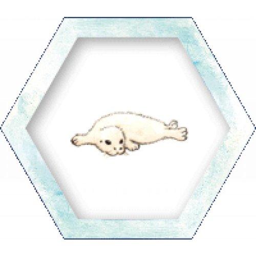 Sunny games - Zonnespel - coöperatieve spellen Antarctica - coöperatief spel