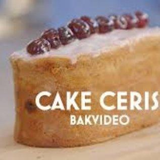 Cakering ovaal RVS 16-9 cm. Cake Cerise