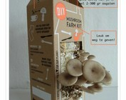 Paddenstoelen kweekpakketten