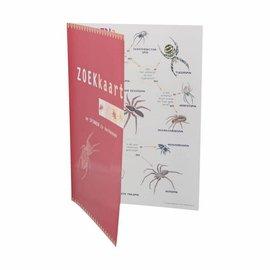 Zoekkaart Spinnen geplastificeerd