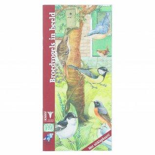 Themaboek Broedvogels in beeld