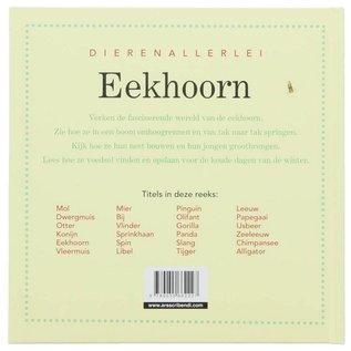 Dierenallerlei - Eekhoorn