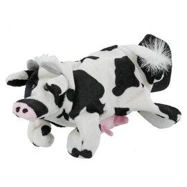 Handpop koe