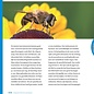 Rupsen horen poepen - Praktijkgids voor natuurbeleving