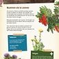 Scharrelkids box - Kriebelbeestjes