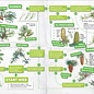 IVN en FSC IVN zoekkaart Bomen (2021)