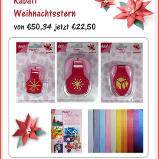 Rabatt Weihnachtsstern - Komplett-Set