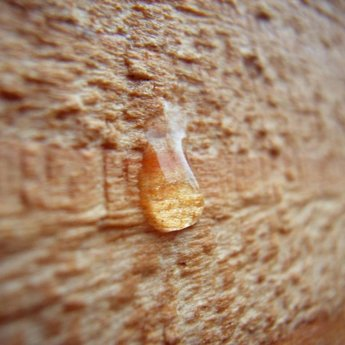 Böhme WoodCare Pflegeöl AS