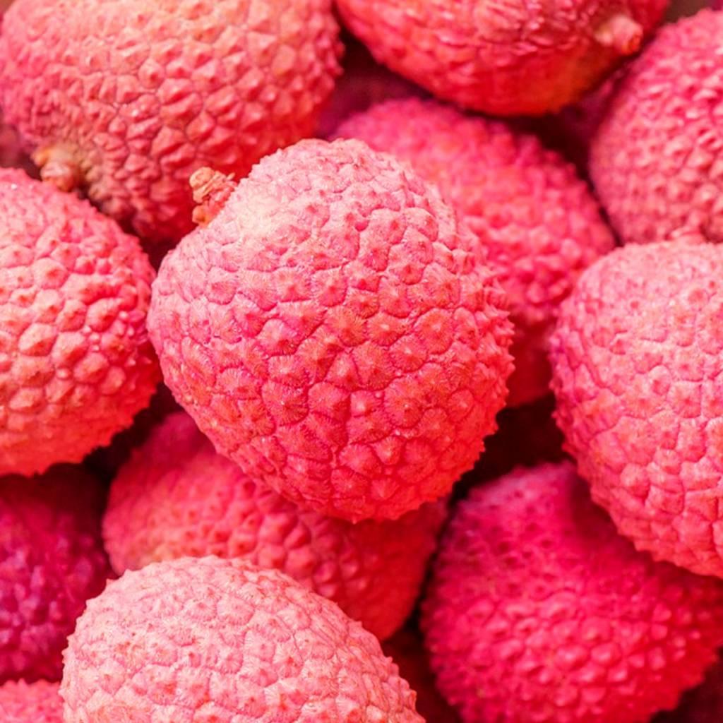 CLASSIC - Litchi- sirop de fruits