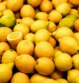 CLASSIC - Citron - Frugtsirup