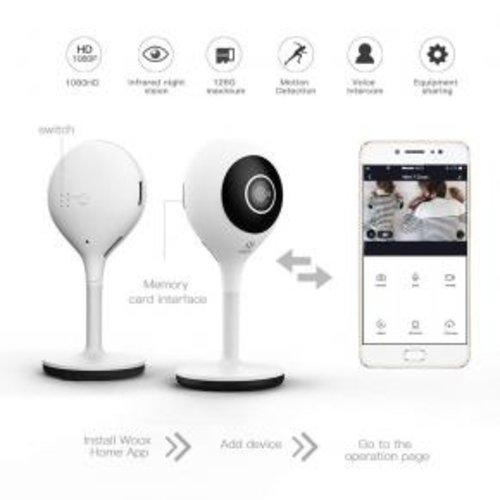 WOOX Woox R4600 indoor smart camera UK adapter,werkt met Alexa en Google  Home Assistent, Powered by Tuya Smart Life