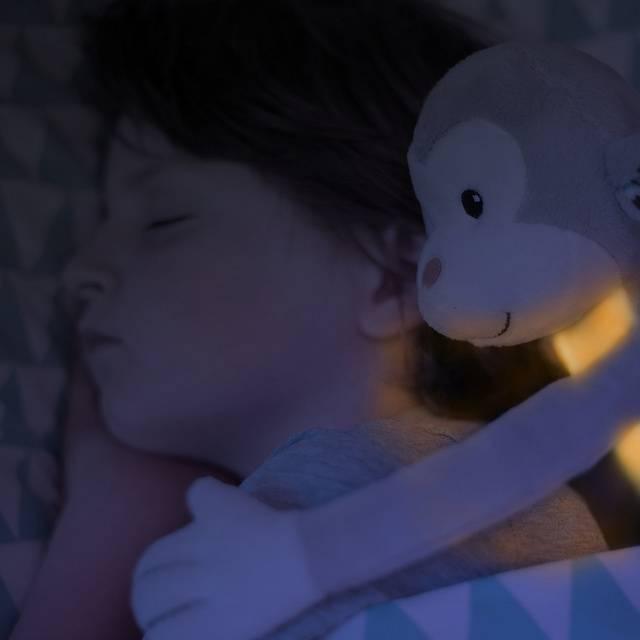 Zazu Zazu knuffel met nachtlampje Max