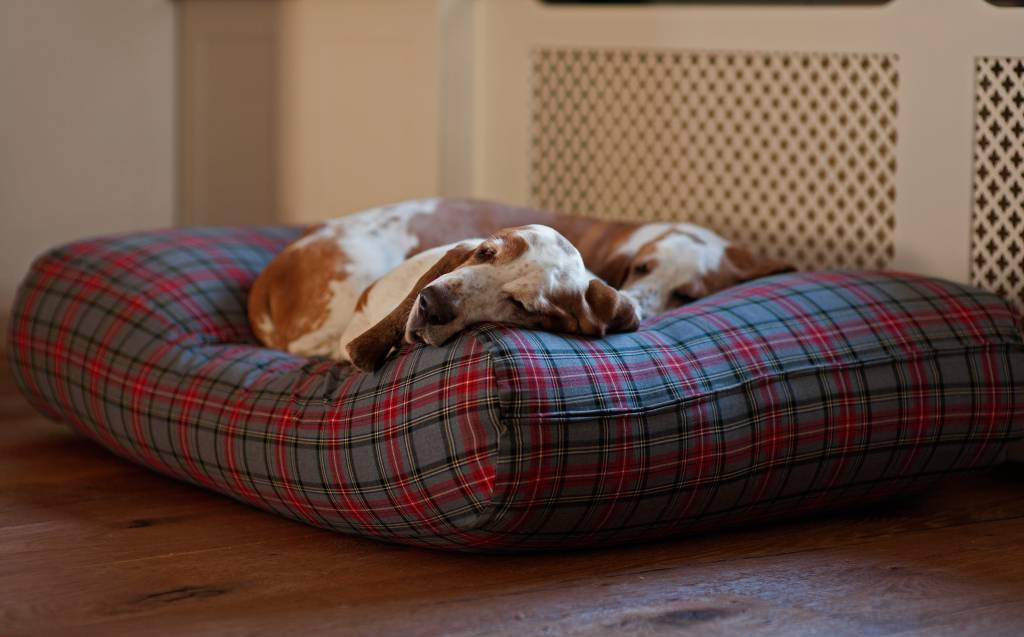 Dog's Companion® Hondenbed scottish grey small