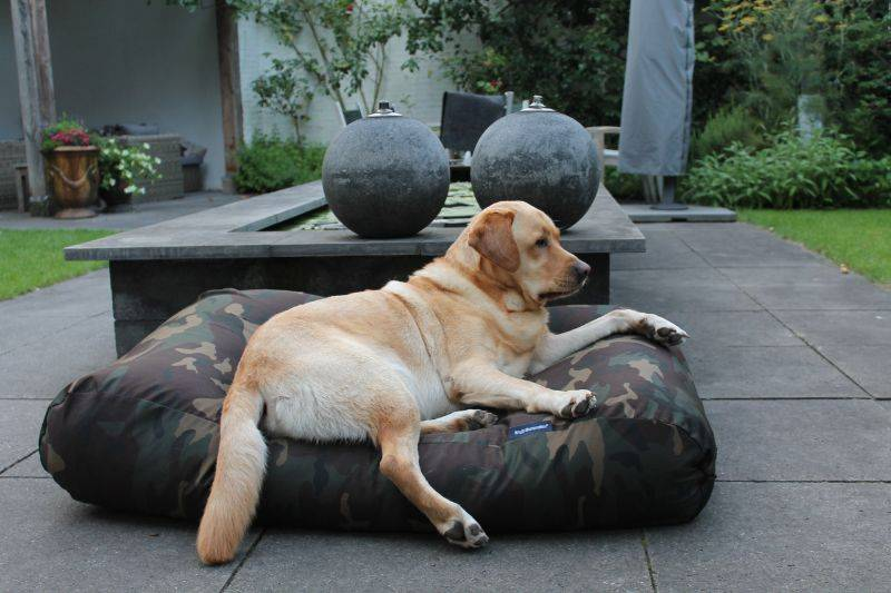 Dogs Companion® Hondenbed army superlarge