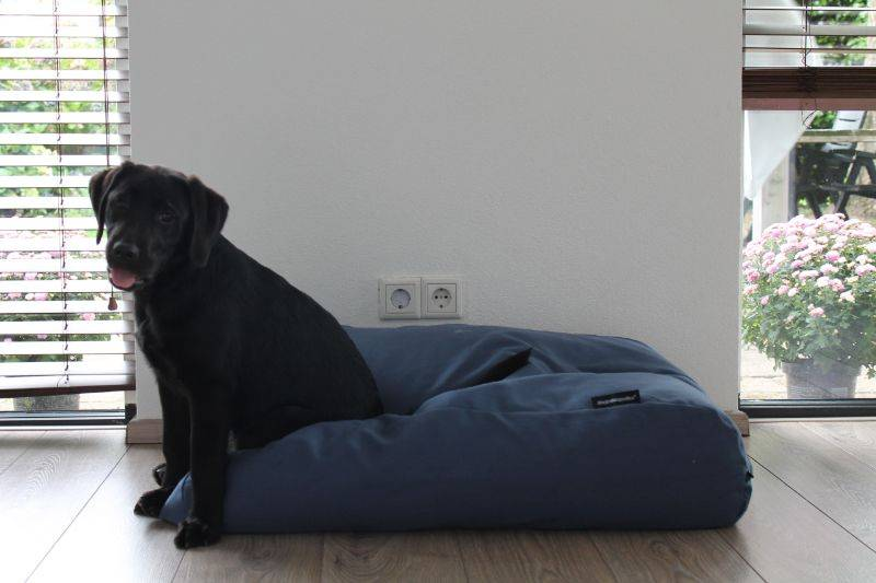 Dog's Companion® Hondenbed rafblauw (meubelstof) small