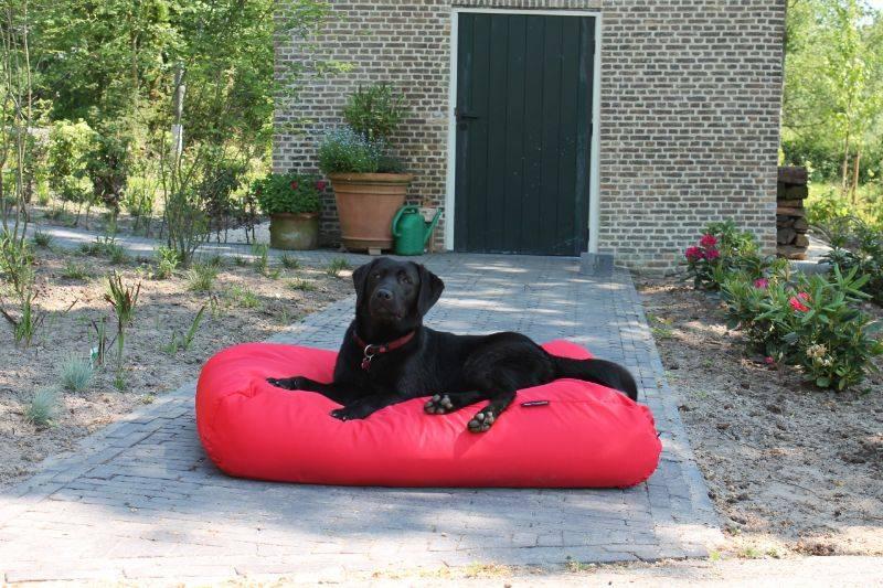 Dog's Companion® Hondenbed rood vuilafstotende coating