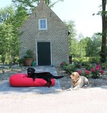 Dog's Companion® Hondenbed rood vuilafstotende coating small