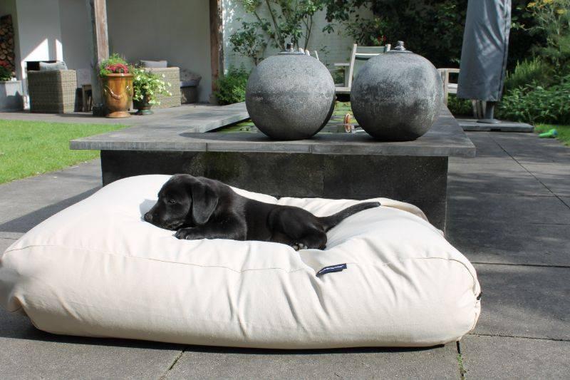 Hondenbed white sand large