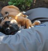 Dog's Companion® Hondenbed charcoal vuilafstotende coating large