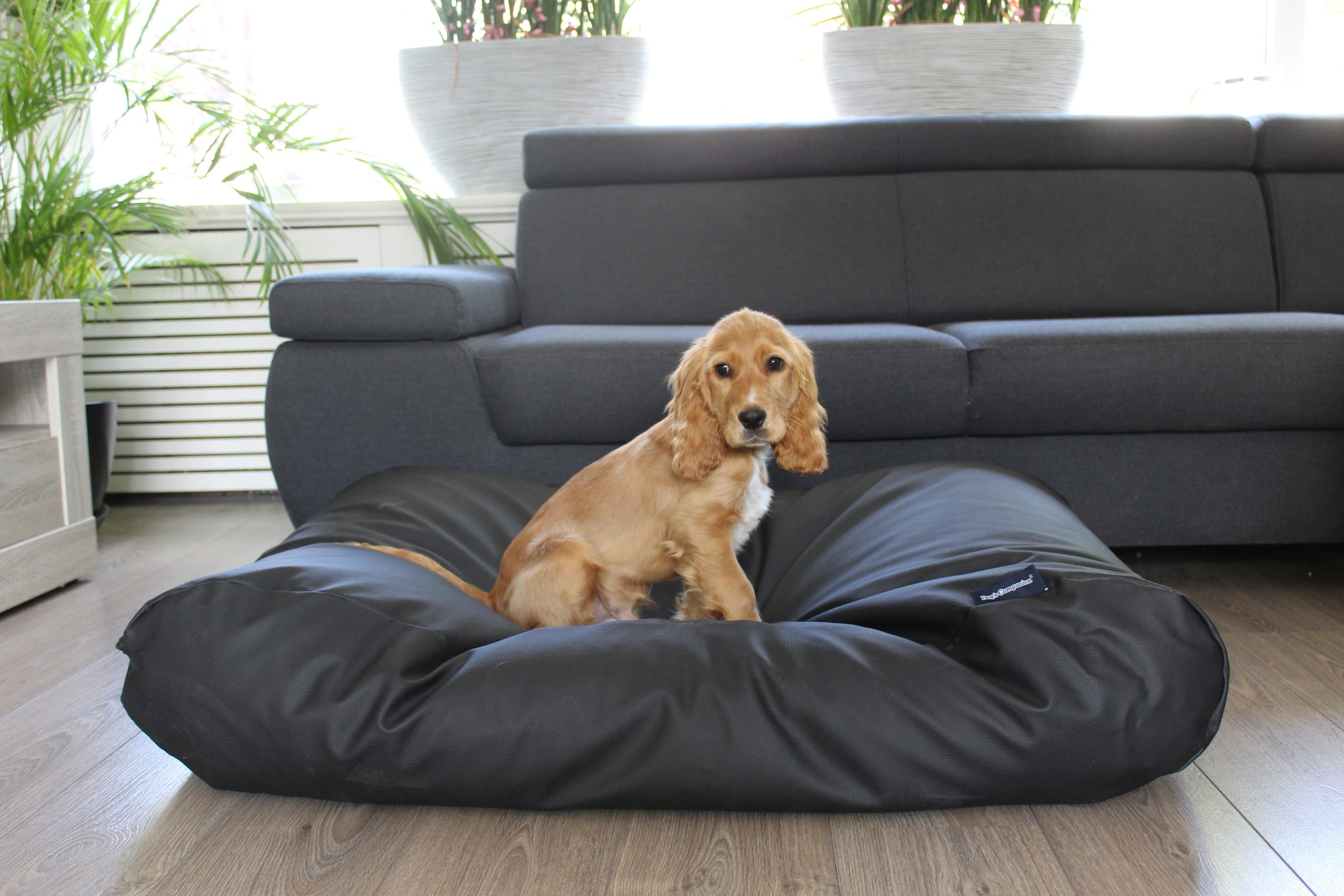 Dog's Companion® Hondenbed zwart leather look small