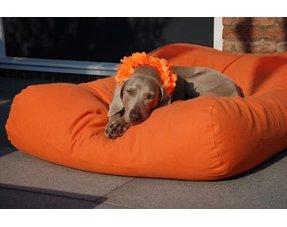 Oranje hondenkussens