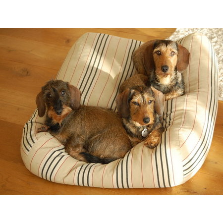 Dog's Companion® Hoes hondenbed country field streep extra small