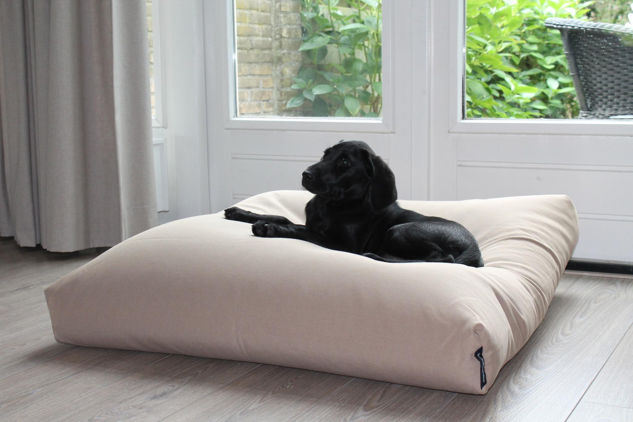 Hondenkussen 96 x 89 x 12 cm beige