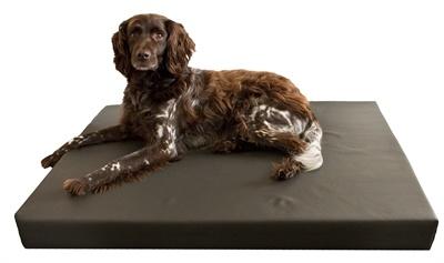 Merkloos Hd orthopedisch honden ligbed grijs