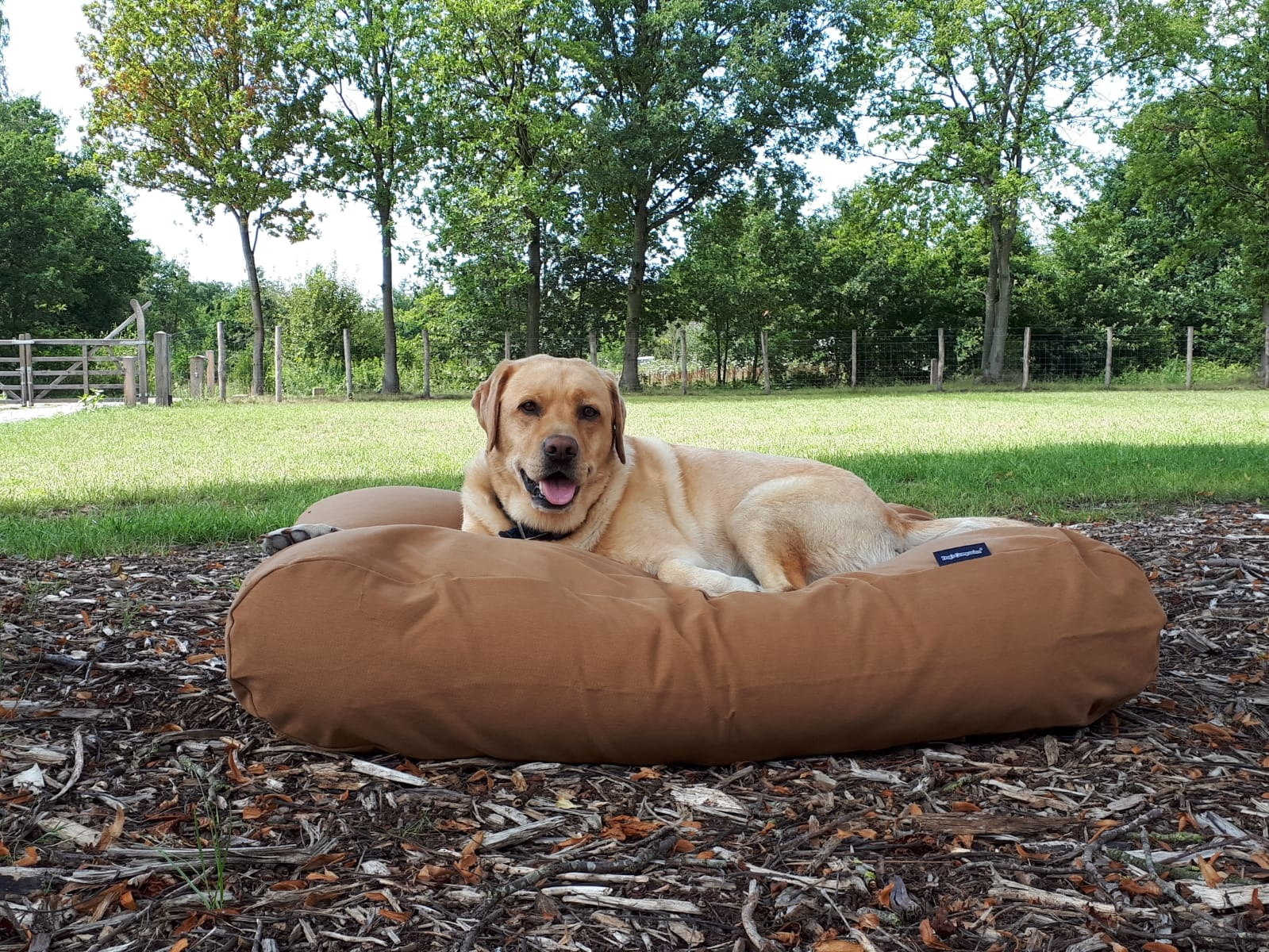 Dogs Companion® Hondenbed Kaneel Small
