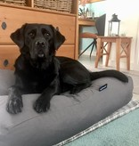 Dog's Companion® Hondenkussen muisgrijs extra small