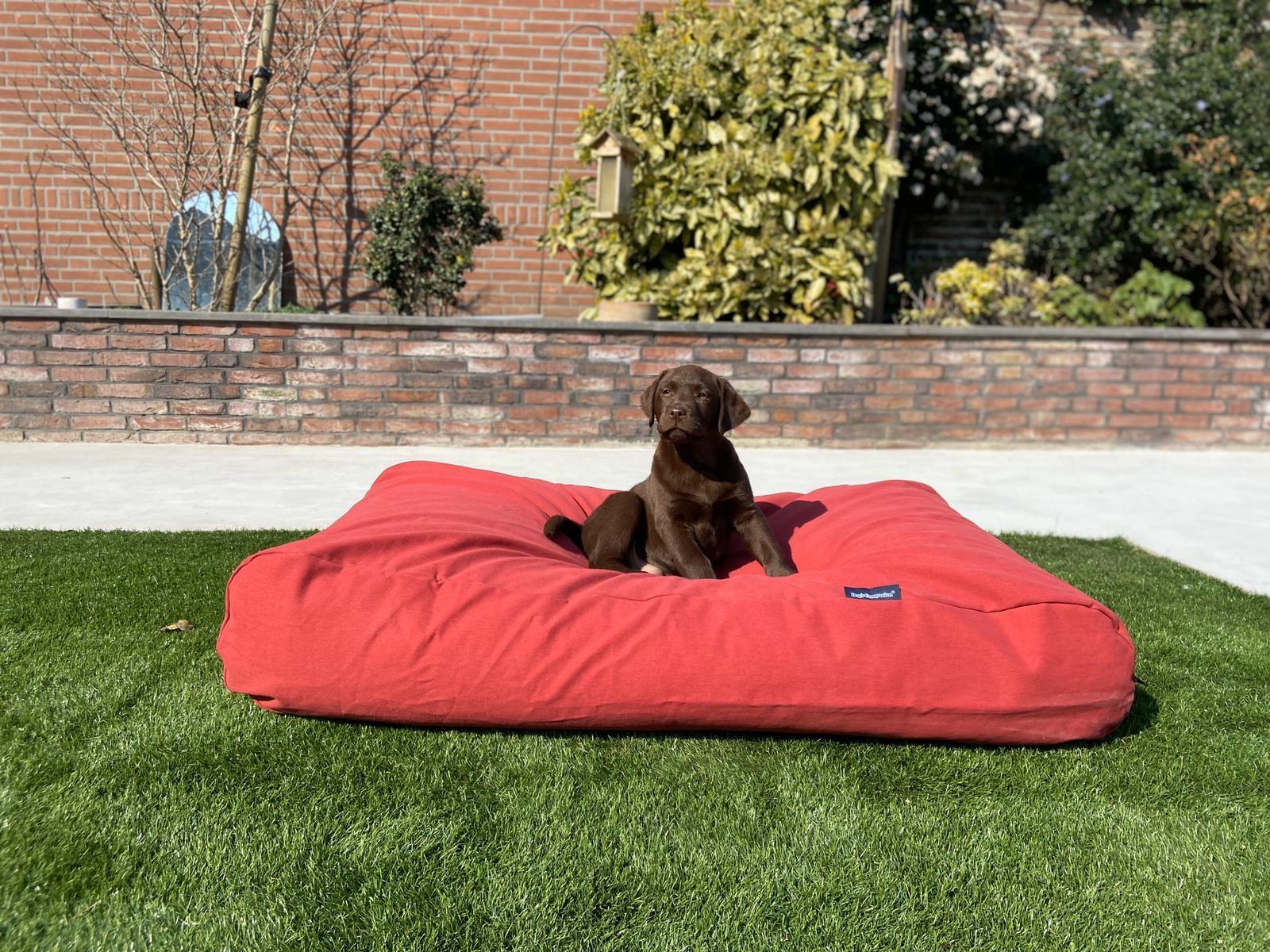 Dog's Companion® Hondenbed steenrood