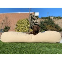 Hondenbed beige extra small