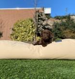 Dog's Companion® Hondenbed beige superlarge