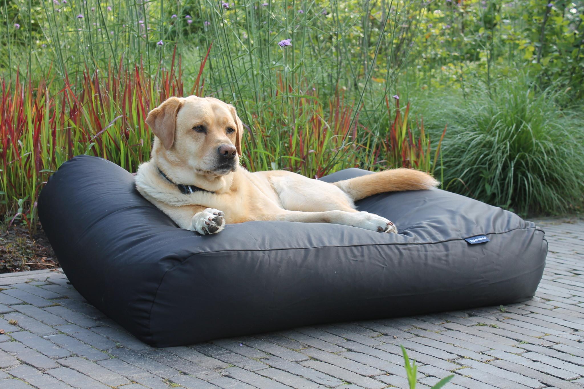 Dog's Companion® Hondenbed zwart vuilafstotende coating superlarge