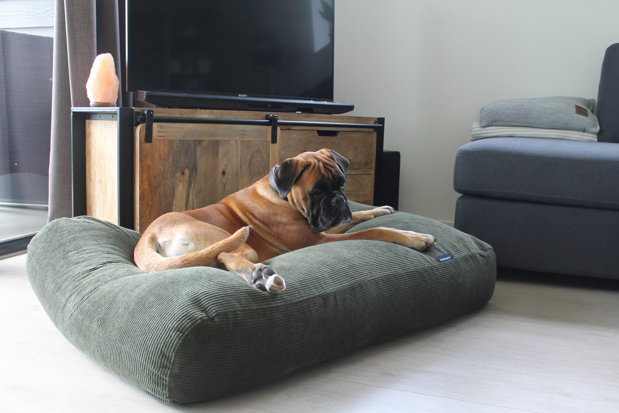 Dog's Companion® Hondenbed Hunting Ribcord
