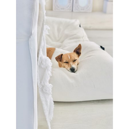 Dog's Companion® Hondenbed white sand extra small