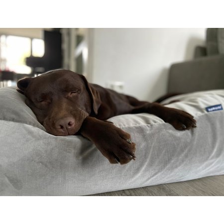 Dog's Companion® Hoes hondenbed Olifant velours