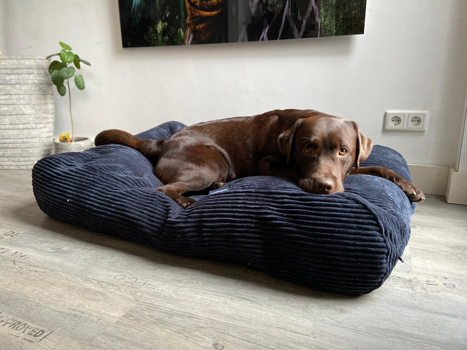 Dog's Companion® Pre-order! Hondenbed Midnight Blue giant ribcord