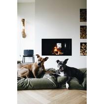 Hondenbed Mosgroen velours Superlarge