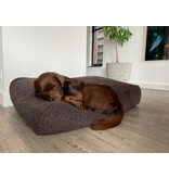 Dog's Companion® Losse hoes Stockholm Rough brown/black