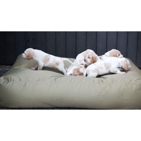 Dog's Companion® Hondenkussen khaki vuilafstotende coating large